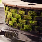 Moss covered Fire Pit Wall