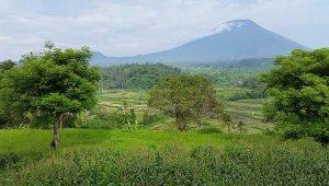 Mt. Agung from Bali Asli verandah