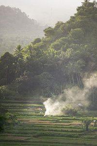 Bali Asli view from deck
